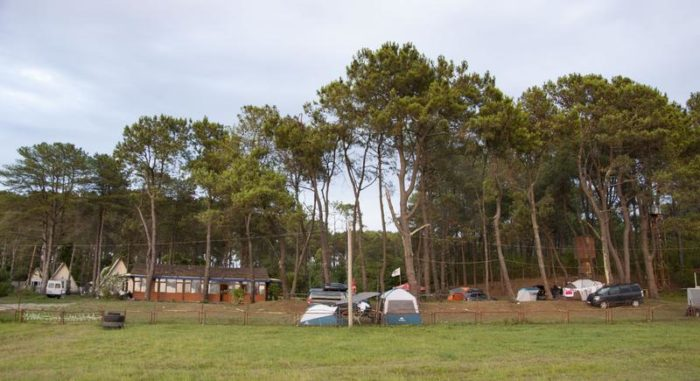 Кемпинг в Грузии Black Sand Camp, вид со стороны пляжа